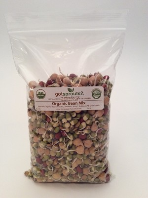 Organic Sprouted Bean Mix